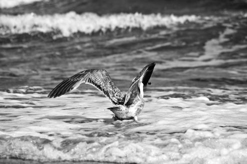 Fotosinne_Am Strand (52 von 61)
