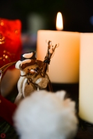 Vierter_Advent-5