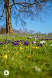 2016_03_26 Frühling_Britzer Garten_Osterwochenende-13