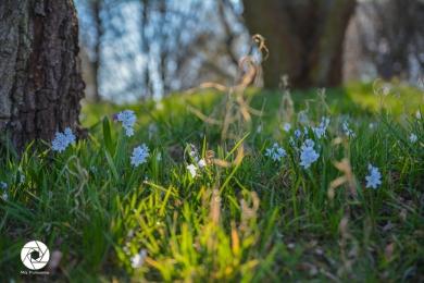 2016_03_26 Frühling_Britzer Garten_Osterwochenende-18