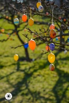 2016_03_26 Frühling_Britzer Garten_Osterwochenende-5