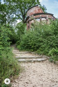 2016_05_16 Ruinenberg-1372