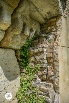 2016_05_16 Ruinenberg-1412