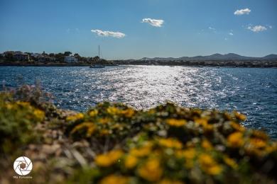 2016_04-05 Mallorca_JuMeLiJa-121